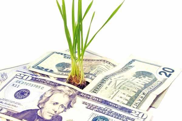 Pożyczki i kredyty bez bik